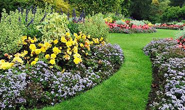 entretien espaces verts toulouse ,fleurissement toulouse, paysagiste toulouse, paysagiste colomiers