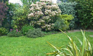 creation jardin toulouse un oeil sur votre jardin. Black Bedroom Furniture Sets. Home Design Ideas