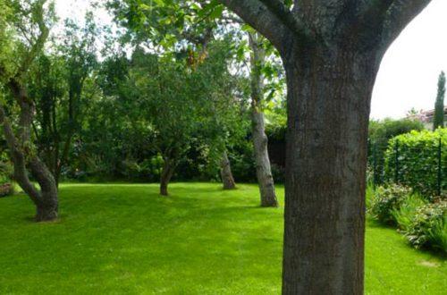 entretien espaces verts colomiers 31 un oeil sur votre jardin. Black Bedroom Furniture Sets. Home Design Ideas