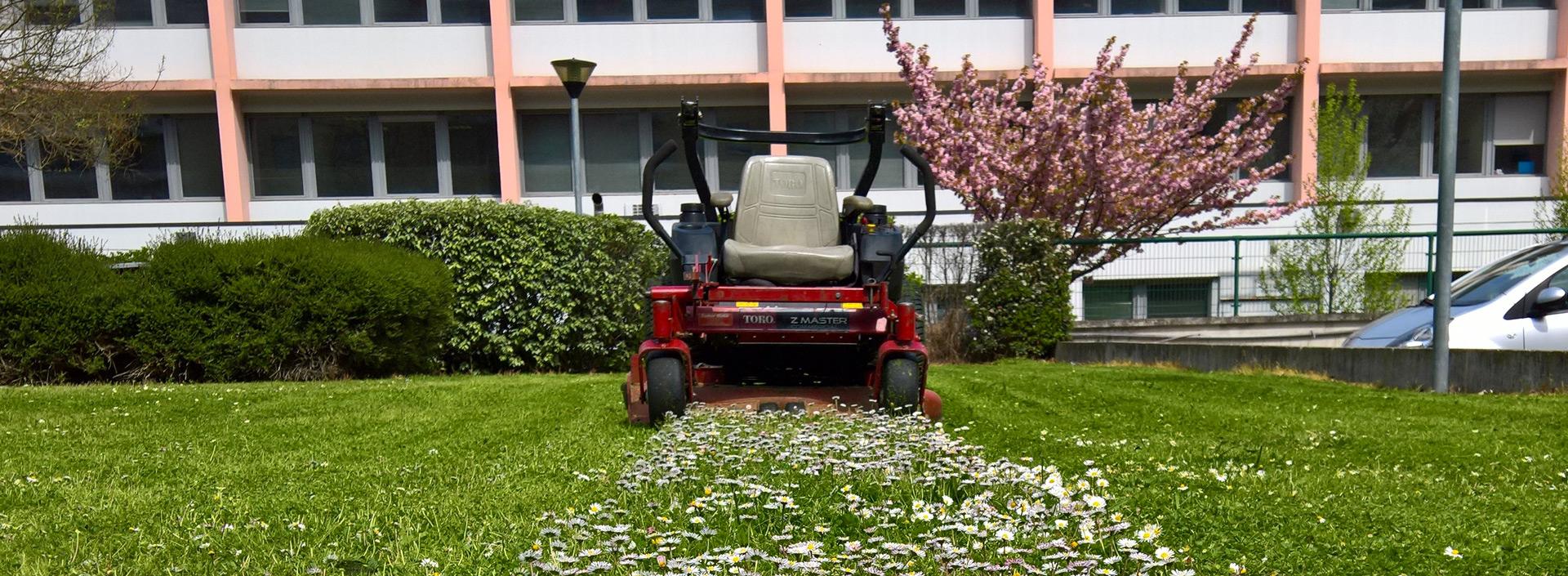 Paysagiste toulouse accueil un oeil sur votre jardin for Entretien jardin quesnoy sur deule